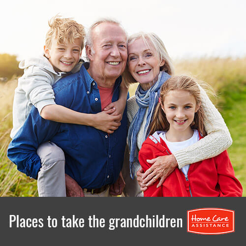 Great Places Where the Elderly Can Take Their Grandchildren in Victoria, BC, Canada