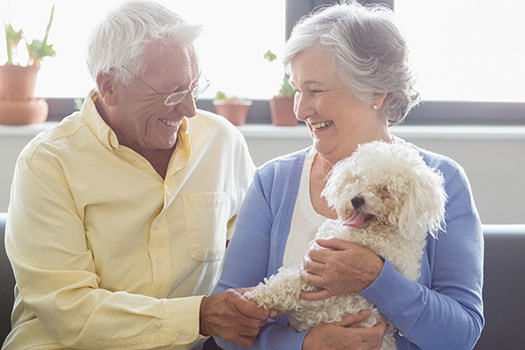 Ways Owning a Pet Benefits Older Adults in Victoria, BC